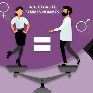 index egapro